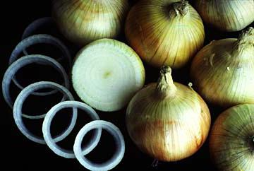 Лук геркулес описание и характеристика сорта мнение садоводов с фото