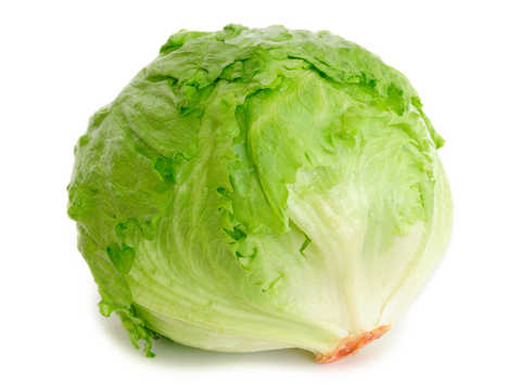 Салат латук – ранние витамины