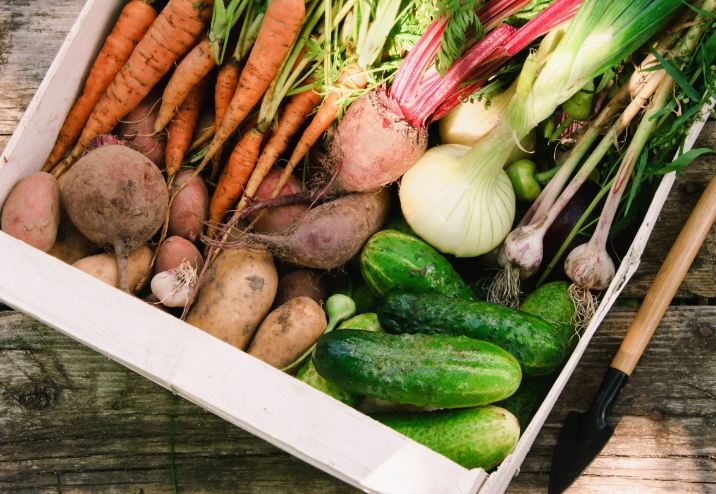 Погодные условия и овощи
