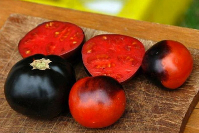 pomidory_black