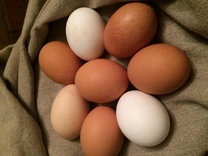 Как получить крупные яйца