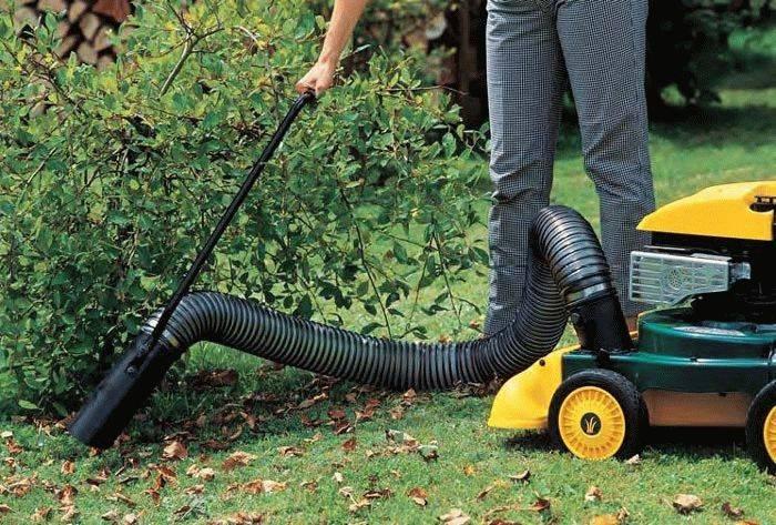 Как правильно выбрать садовый пылесос: обзор всех видов