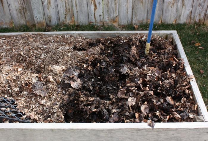 Выращивание подосиновиков в домашних условиях