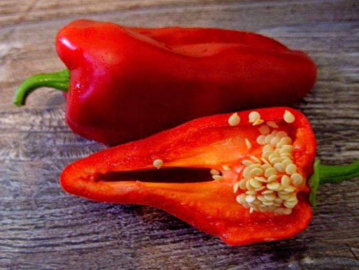 Сладкий перец Ласточка: характеристика, особенности выращивания